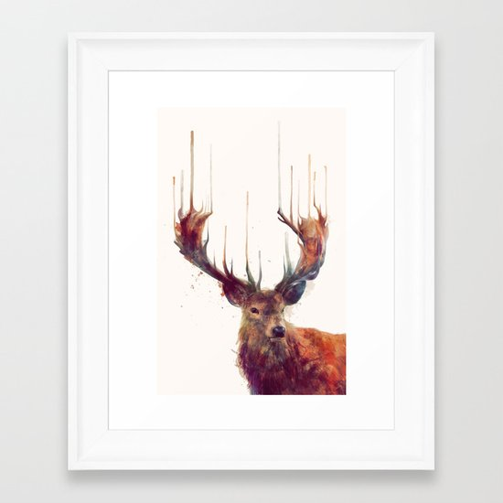 Red Deer // Stag Framed Art Print
