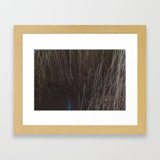 WATER THOUGH REEDS Framed Art Print