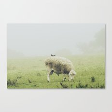 The sheep and the bird Canvas Print