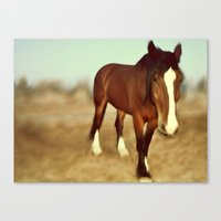 I Dream Of Draft Canvas Print