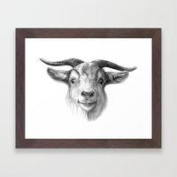 Curious Goat G124 Framed Art Print