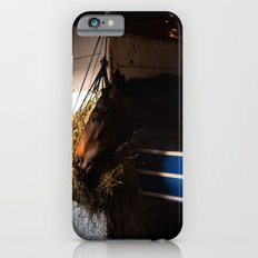 Horse Slim Case iPhone 6s
