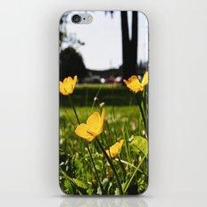 Yellow park flowers iPhone & iPod Skin