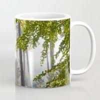 Pine trees viewed through autumnal Beech tree leaves. Norfolk, UK. Mug