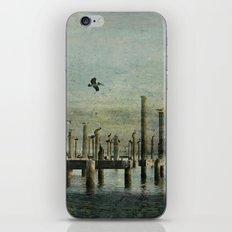 Pelicans Landing iPhone & iPod Skin