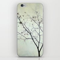 Tree In The Fog iPhone & iPod Skin