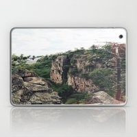 Mountain Air  Laptop & iPad Skin