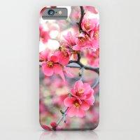 Evening Quince iPhone 6 Slim Case