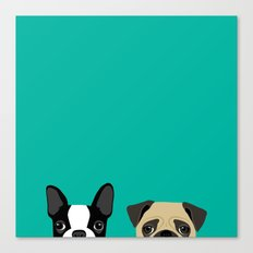 B Terrier & Pug Canvas Print