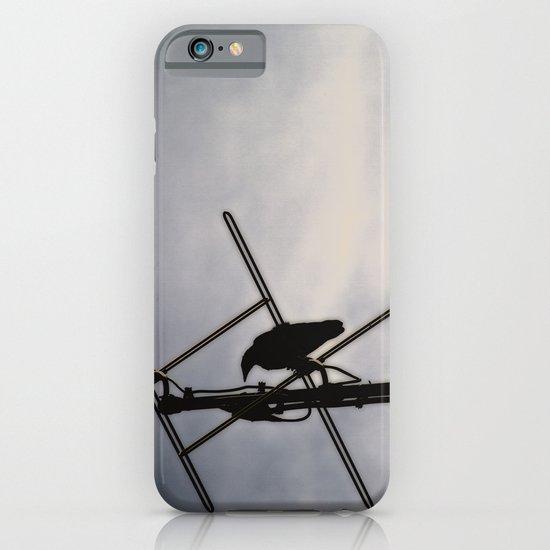 Ravens Perch iPhone & iPod Case