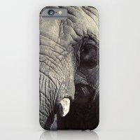 ELEPHANT OH MY! iPhone 6 Slim Case