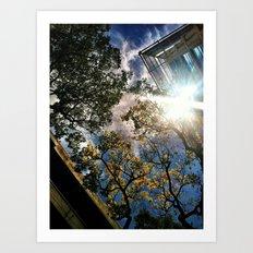 Manoa Sky Art Print