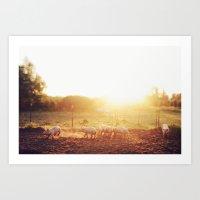 Pig Dust Art Print