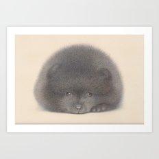 Black Pom puppy Art Print