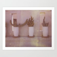 Moroccan Cactus Art Print