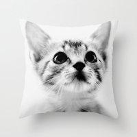Sweet Kitten Throw Pillow