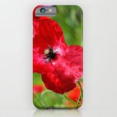 wild poppies iPhone 6 Slim Case