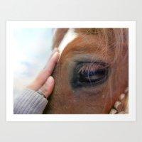 Horse healer Art Print