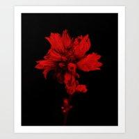 Flower In Black&Red Art Print