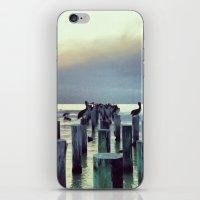 Voler. iPhone & iPod Skin