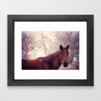 Horse 2 Framed Art Print