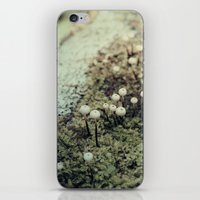Toadstool Forest iPhone & iPod Skin