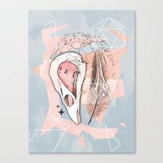 Feather Box V2 Canvas Print