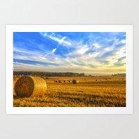 Halcyon Harvest Days Art Print
