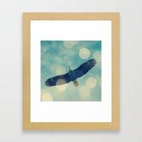 Bald Eagle Overhead Framed Art Print