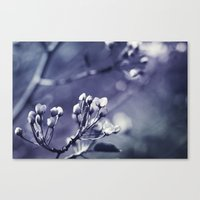 Spring In Black And Whit… Canvas Print