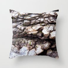 Wood Texture #1 Throw Pillow