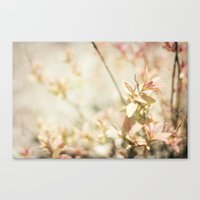 Vintage Mood Canvas Print