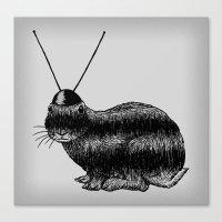 Fuzzy Reception Canvas Print