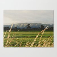 Coast range Canvas Print