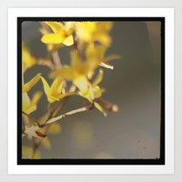 Mellow Yellow Art Print