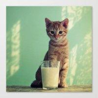 Kitteh haz milk Canvas Print
