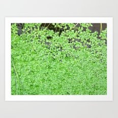 Floating Nature Art Print