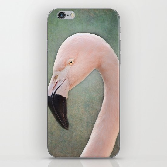 The solitary Flamingo iPhone & iPod Skin