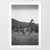 Kaleidoscope of Giraffes Art Print