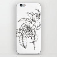 Bold & Fine iPhone & iPod Skin