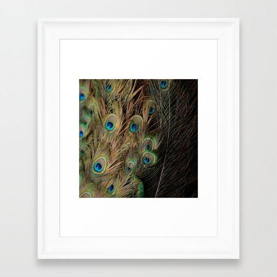 Peacock #1 Framed Art Print