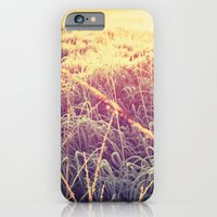 frosty sunrise iPhone 6 Slim Case