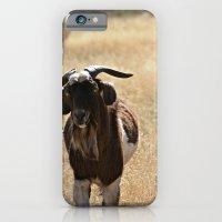 Goat iPhone 6 Slim Case