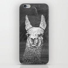 Black White Vintage Funny Llama Animal Art Drawing iPhone & iPod Skin