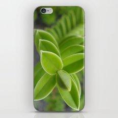 Plant! iPhone & iPod Skin