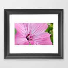 Purple stripes Framed Art Print