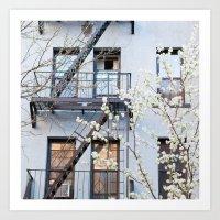 New York City Architecture Photography, New York Art, Brooklyn Prints, NYC Wall Art, Urban Nature Pr Art Print