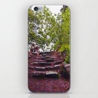 Stone Steps iPhone & iPod Skin