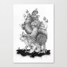 Mr. Toad Canvas Print