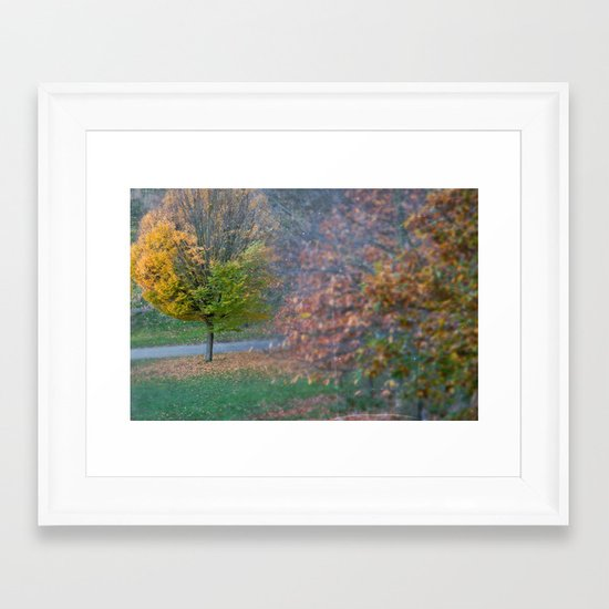 Autumnal Framed Art Print